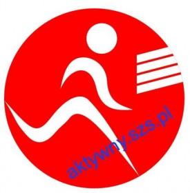 logo_aktywny